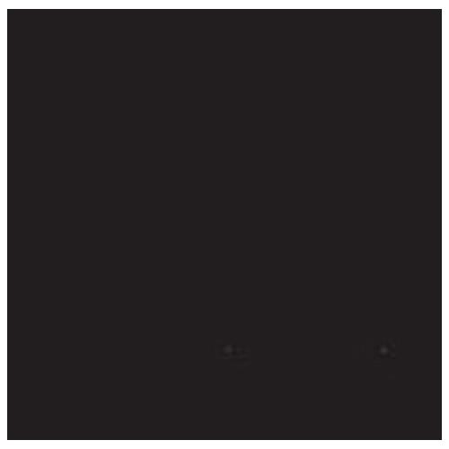 Falcon Eyes fond de studio papier 20 noir 2,75 x 11 m