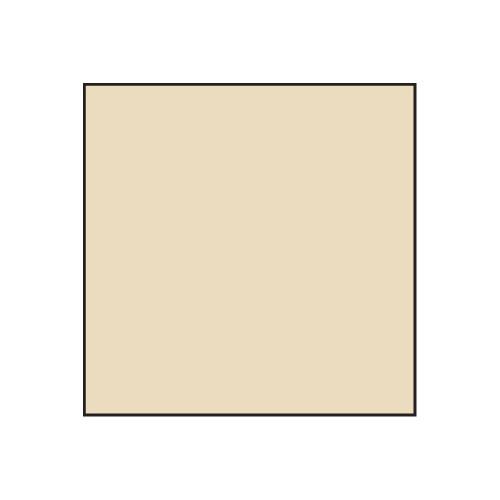 Lee Filters No.81C - 100x100mm