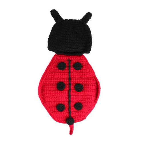 Newborn Baby Ladybug Set